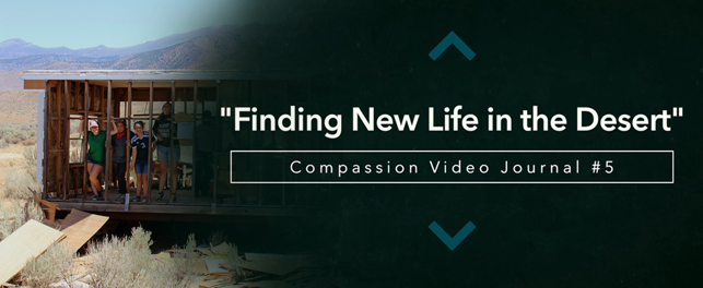 NEW VIDEO RELEASED – Compassion Video Journal #5